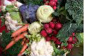 Brantford Farmer's Market - Fresh Vegetables