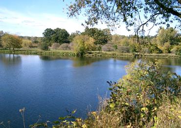 Grand River Brantford